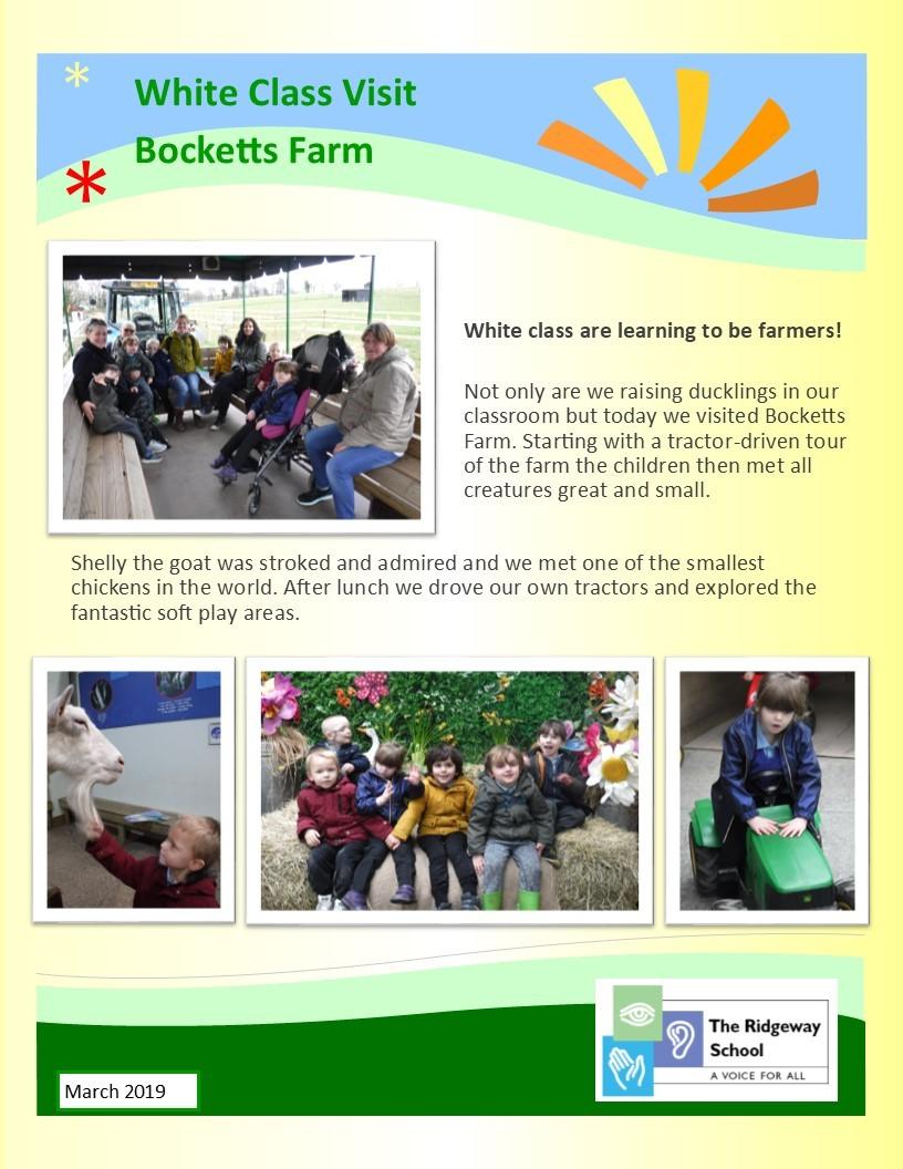 Bocketts Farm Mar19