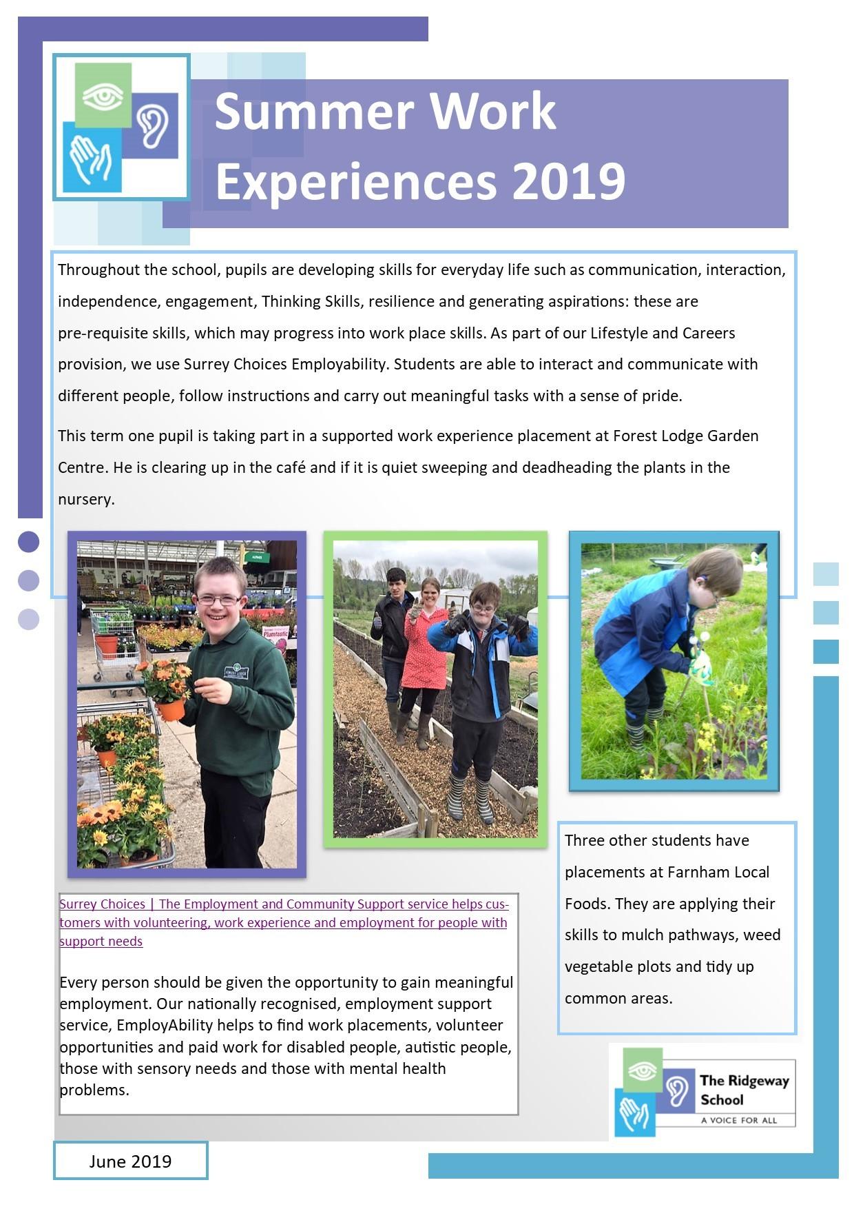 Summer Work Experiences 2019
