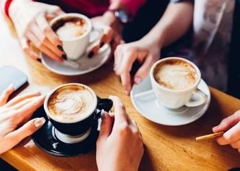 Café Chat - Whats That?